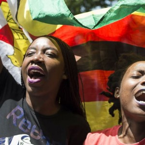 Revival or slow burn? Zimbabwe's investment and development prospects - ISS Africa