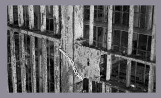 Public and private prisons and the corrections privatization debate