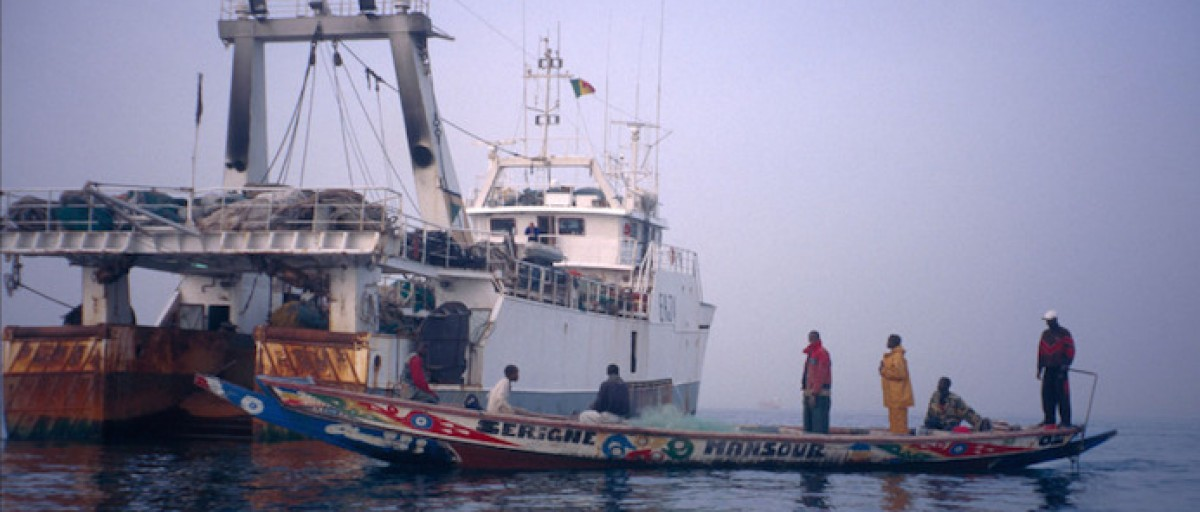 How can Senegal combat illegal fishing? - ISS Africa