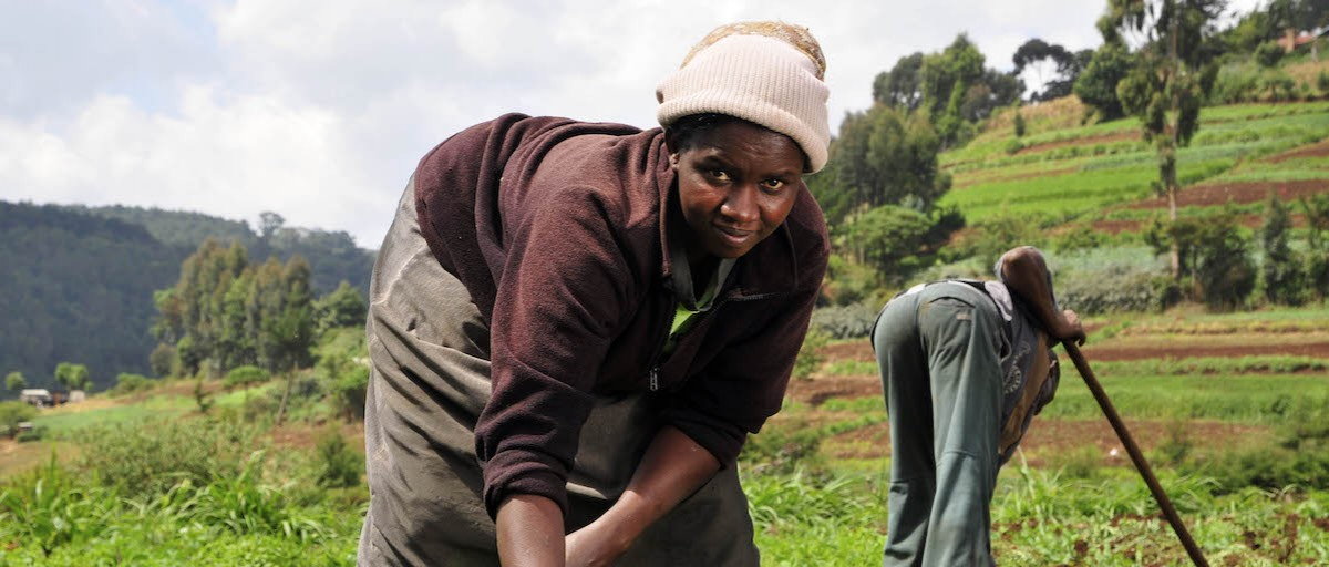 Food Security Under Threat In Kenya Iss Africa
